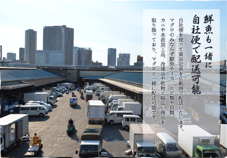 鮮魚も一緒に 自社便で配送可能 自社便を使い、東京近県を広範囲で配送いたします。 マグロのみならず、鮮魚やイカ、エビ類、 貝類、カニ、水産加工品、冷凍品、乾物